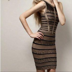 Gracia Bandage Sheer Blk & Nude Dress